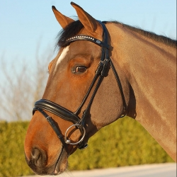 Bride Dyon Dressage muserolle large